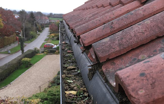 Gutter Cleaning in Chudleigh