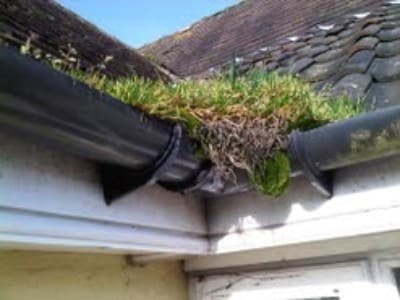 Blocked Gutters in Sidmouth